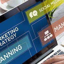 veterinary marketing strategies